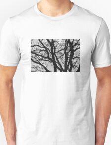 Tilia night silhouette T-Shirt