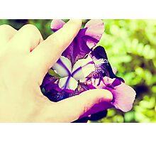Erotic Iris Photographic Print