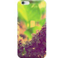 Vintage V Syringa iPhone Case/Skin