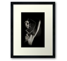 up in smoke with co Framed Print