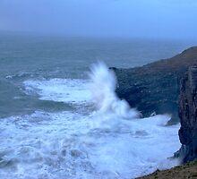 Stormy Seas by David Wilkins