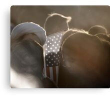 Americans Part !... GOD BLESS AMERICA Canvas Print