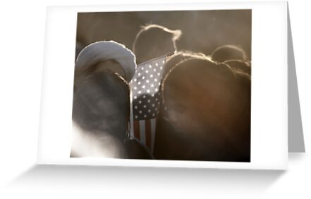 Americans Part !... GOD BLESS AMERICA by linaji