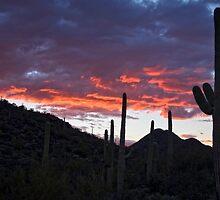 Sundown Tucson  by soulfulpix