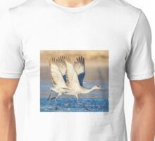 Ice Dancers Unisex T-Shirt