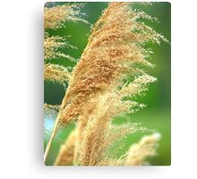 Golden Green Canvas Print
