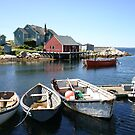 Peggy&#x27;s Cove, Nova Scotia by Alyce Taylor