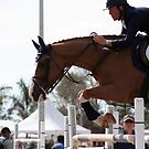 Big Guys in the Schooling Ring by Victoria DeMore