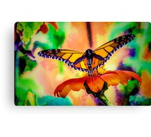 Monarch Butterfly & Mexican Sunflower Canvas Print
