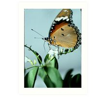 A Middle Eastern Monarch. Art Print