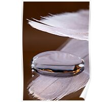 A Feather for Protection Poster