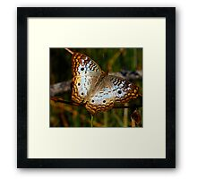 White Peacock Butterfly in Fractalius Framed Print