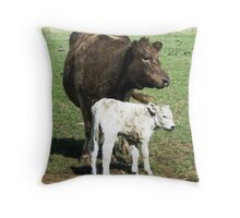Mother & son  (3 hrs. old)- Murray Grey Cattle Throw Pillow