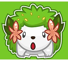 Shaymin Land Forme Photographic Print