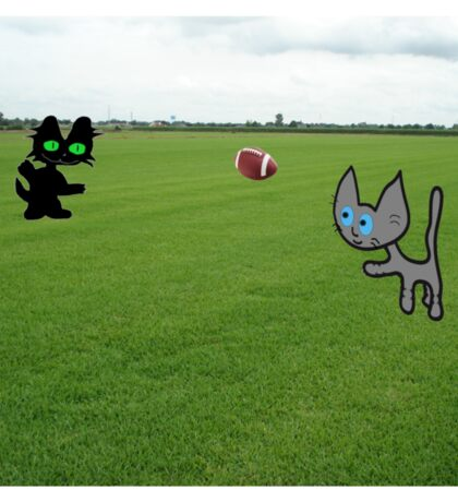 Cats Practice Football Sticker