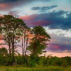 Early African Sunset by Marylou Badeaux