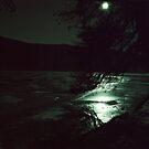 Moonlit night by Jörg Holtermann
