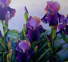 Iris garden by artistsuetaylor