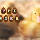 Happy Easter Greetings from Cute Duckling by Shelley Neff