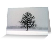 Blizzard Day Greeting Card