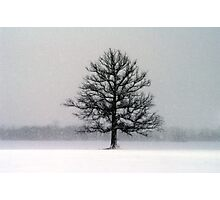 Blizzard Day Photographic Print