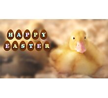 Happy Easter Greetings from Cute Duckling Photographic Print