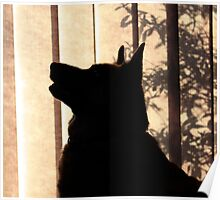 Silhouette of Obedience  Poster