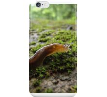 Beautiful Details iPhone Case/Skin