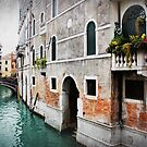 Missing Venice  by Hollie Nass