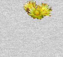 Golden Barrel Cactus Flower Hoodie