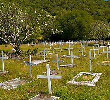 Graveyard at Yarrabah by Paul Davis