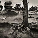 The Garden of the Gods, Colorado, 1979 by Jerry Carpenter