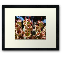 And the band played Waltzing Matilda Framed Print