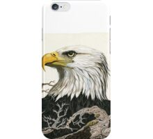 Eagle's View - realistic painting  iPhone Case/Skin