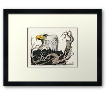 Eagle's View - realistic painting  Framed Print