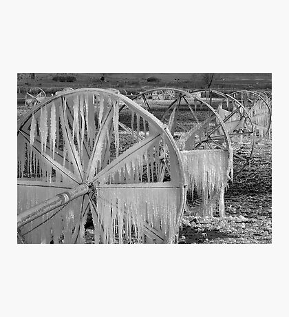 Frozen Wheels B&W Photographic Print