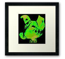 Sunwatcher: Laika Green Framed Print
