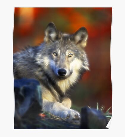 Lonely Wolf Poster
