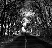 A bend in the road. by Steve Chapple