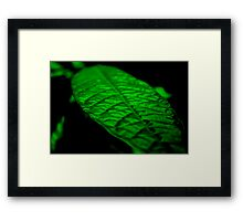 Fluorescent Green Framed Print
