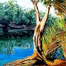 """The Billabong'  -  finished work  -  Australia Day 2009. by gunnelau"