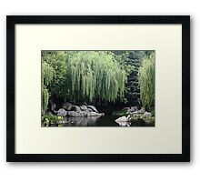 Willows! Framed Print