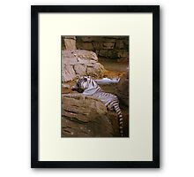 Bathing Beauty Framed Print