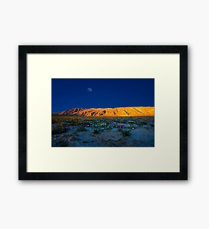 Last Light on The Valley Floor With Wildflowers, Anza Borego Framed Print