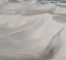 Lancelin Sand Dunes No.2 by Michelle *