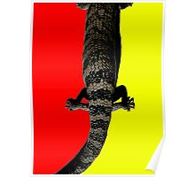 Indiginous Australia Poster