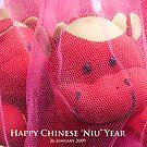 "Happy Chinese Niu Year: Wishing you ""Dragon horse sperm God"" by richardseah"
