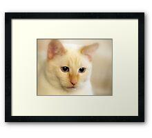Slick Mister Framed Print