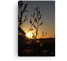 Murder at Sunset Canvas Print
