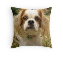Rupert 2009 Throw Pillow